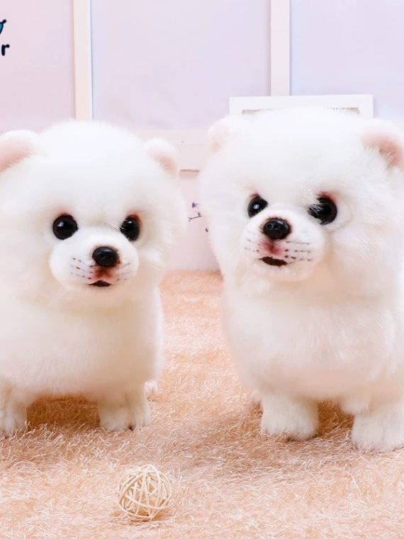 Quality-Plush-Pomeranian-Dog-Toy-Triver-Stuffed-Animal-Doll-Puppy-Pet-Kids-Baby-Birthday-Gift-Present-1.jpg